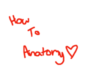 Tutorial: How to anatomy